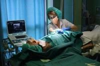 Policlinico di S.Orsola, anno record per i trapianti di rene