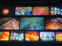Baggiovara protagonista del Congresso di Chirurgia dell'apparato digerente