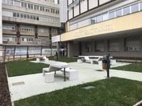 Parco del Policlinico di Modena: verranno messi a dimora 80 nuovi alberi