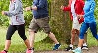 Gruppi di cammino, al via i corsi per diventare 'walking leader' organizzati dalla Medicina dello Sport