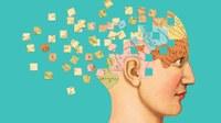 Giornata mondiale della Salute mentale: progetti Ausl al convegno nazionale (col ministro Speranza)
