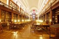 Screening sierologico gratuito per il personale dell'Università di Bologna