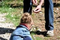 In Emilia-Romagna test sierologico rapido e gratuito in farmacia anche per i nonni non conviventi
